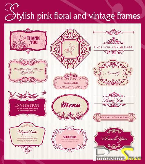 Stylish pink floral and vintage frames -  Vector material